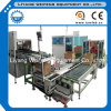 Carton Auto Packing System Solution