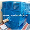 Yr High Voltage Slip Ring Wound Rotor Motor