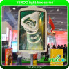 Advertising Display Street Lamp Pole Light Box