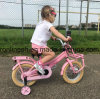 Dutch Style 12in Bicycle/Mini Fietsen/Mini Bike for Child/Kids Bicycle/Toddler Bike/Bike for Kids/Kinder Bike Ce
