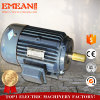 Cast Iron Asynchronous AC Electric Three Phase Motor for Boat
