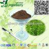 Maca Extract, Tongkat Ali Extract, Men Health Herbal Blend Powder, Formulation OEM Service