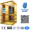 Residence Home Elevator with AC Vvvf Gearless Drive (RLS-252)