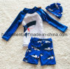 New Design Swimming Suit for Kids, Boy′s Swimming T Shirts and Pants