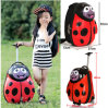 Hard Shell Ladybird Baby 13' Travel Backpack Bag and 17' Rolling Carry-on Case