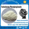 Anabolic Steroid Powder Test PP Testosterone Phenylpropionate for Muscles Building