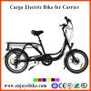 20inch Cargo E-Bicycle Front Hub Motor Electric Bicycle E-Bike Electric Bike (PE-TDN07Z)