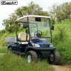 30% Climbling Electric Utility Golf Cart for Mountain Area
