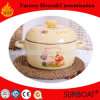 Cookware Enamel Casserole New Design Houseware