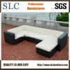 Rattan Sofa/Sofa Set/Furniture Sofa (SC-B9504)