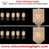 Tradition Holiday LED Decoration Light