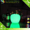 LED Table Light LED Apple