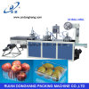 Pet Apple Fruit Tray Forming Machine with Stack (DHBGJ-350L)