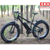 Fat Tire Electric Bicycle with Lithium Battery