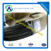 G I Binding Wire/Black Anealed Wire (Bwg8-Bwg22)