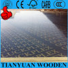 Construction Grade Concrete Formwork Plywood for Sale
