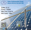 1300W 4in Submersible Solar Water Pump for Irrigation System