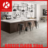 2017 New Hot Designs Rustic Tiles for Wall and Floor