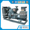50kw/62.5kVA Standby Diesel Genset with Chinese Brand Shangchai