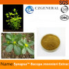 Nootropics Raw Powder Synapsa Bacopa Monnieri Extract for Cooling Blood