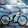 Electric Beach Bike Full Suspension for Sale