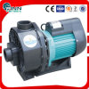 Water Filtration 3phase 1.5HP Swimming Pool Water Pump