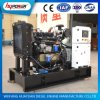 15kw Open Type Diesel Generator Set with 490D Diesel Engine