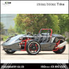 250cc Ztr Motorcycle Trike with EEC Approved