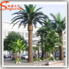 Wholesales Outdoor Fiberglass Artificial Date Palm Tree