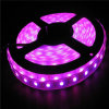 Red, KTV Decoration, CE Rohs 3 Years Warranty Strip LED