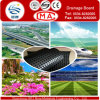 Football Field and Railway Subgrade Grade Drain Board /HDPE Drainage Sheet