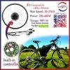 250W Smart Pie E-Bike Motor with Built-in Programmable Controller