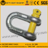 G-210 Commercial Grade Screw Pin Us Type Forged Chain Shackle