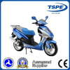 Motor Scooter, Gas Scooter, Scooter, Sport Motorcycle (XS150)