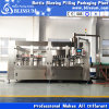 Automatic Plastic Bottle Hot Fruit Juice Drink Processing Machine (3-in-1)