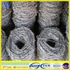 Galvanized Barbed Wire (ISO9001)