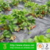 Fruit Cover Insect Protection Vegetables Winter Protection Frost Cover