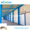 Fishes and Seafood Cold Room with Steel Structure