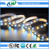 RGB White Epistar SMD5050 Constant current LED Strip Light