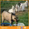 Wholesale Galvanized Metal Bulk Cattle Feild Fence