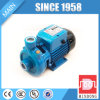 AC Electric Water Pump with Pressure Tank