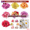 Yiwu China Artificial Flower Buying Agent Garden Silk Flowers (G8101)
