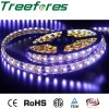 5050 RGB LED Strip Lighting Waterproof IP65 DC 12V 24V