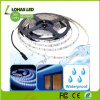IP65 Waterproof Flexible LED Strip Light DC 12V AC 220V with Remote Controller