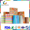 Professional Custom Design Recyclable Colorful Present Bag with Handle