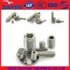 China Hex Socket Head Set Screw in Stainless Steel 304