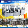 Automatic Bottled Fruit Juice Production Line / Filling Plant