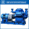 Piston Type Air Gas Compressor