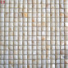 New Design Building Material Shell Mosaic Wall Tile (CB07)