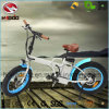 En15194 250W Hydraulic Fat Tire Ebike Folding Electric Beach Scooter